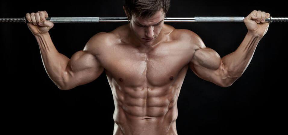 Como ganhar massa muscular, utilizando a nossa memória muscular de maneira correta