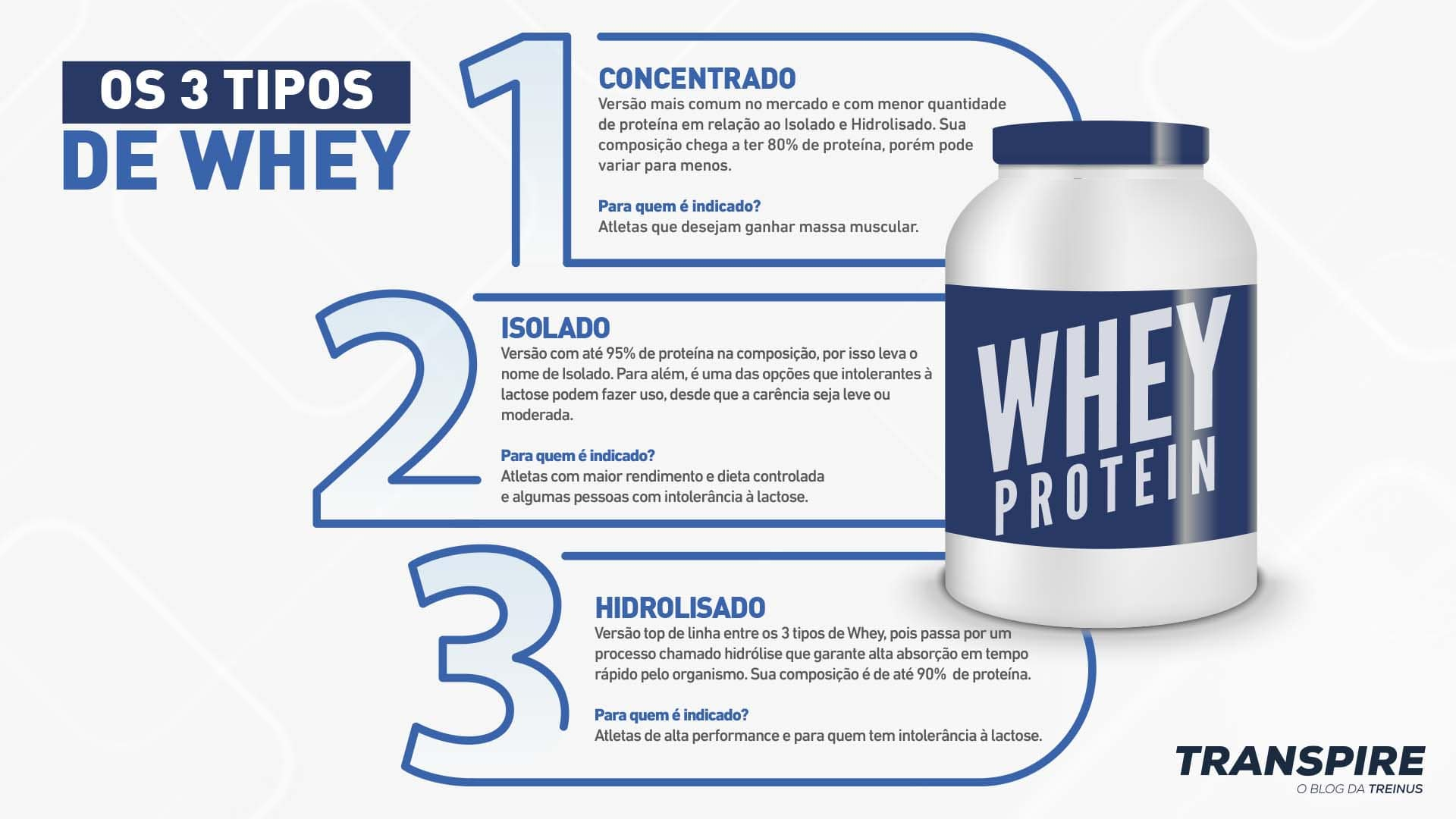 infográfico com os 3 tipos de whey protein